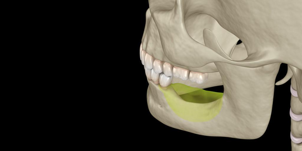 jaw bone graphic